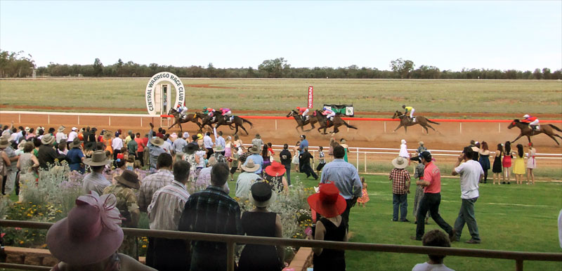 CiR-charleville-cup-800