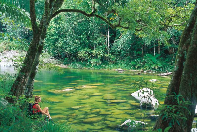 Great Barrier Drive / Mossman Gorge